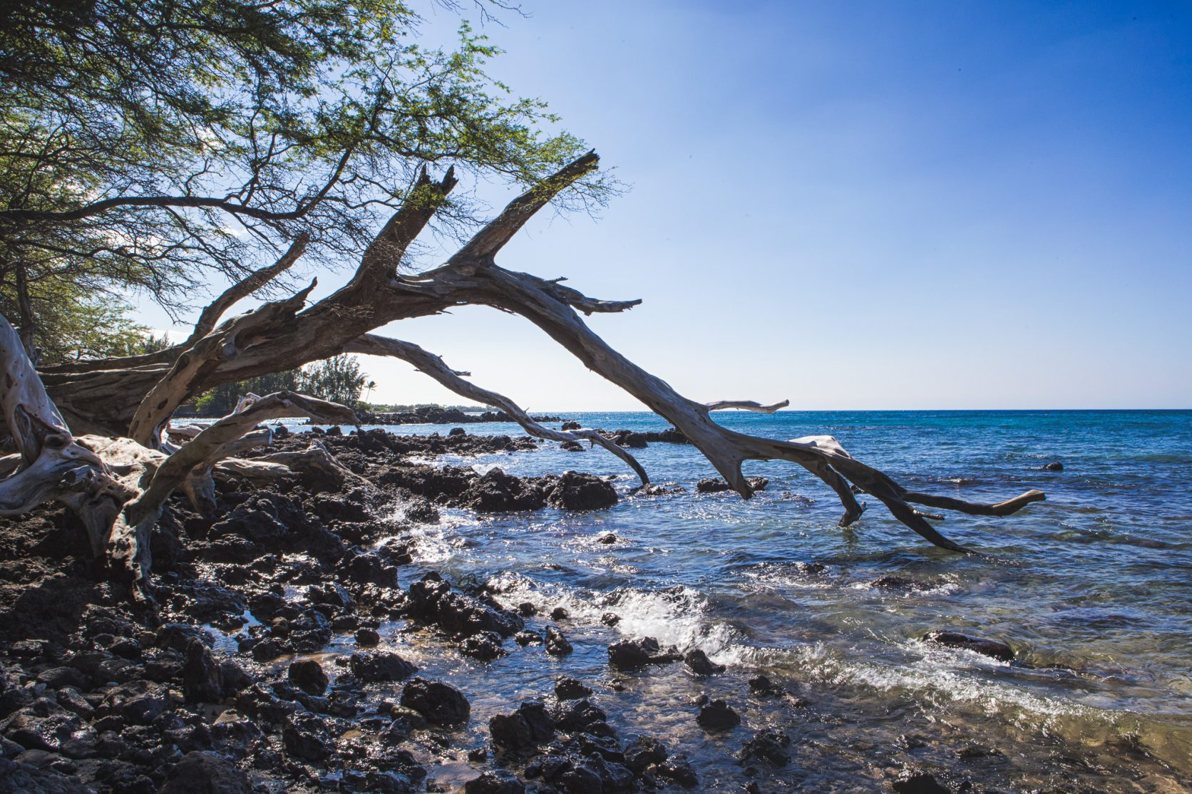 Beach 69 -Kailua Kona hawaii location big island photographer