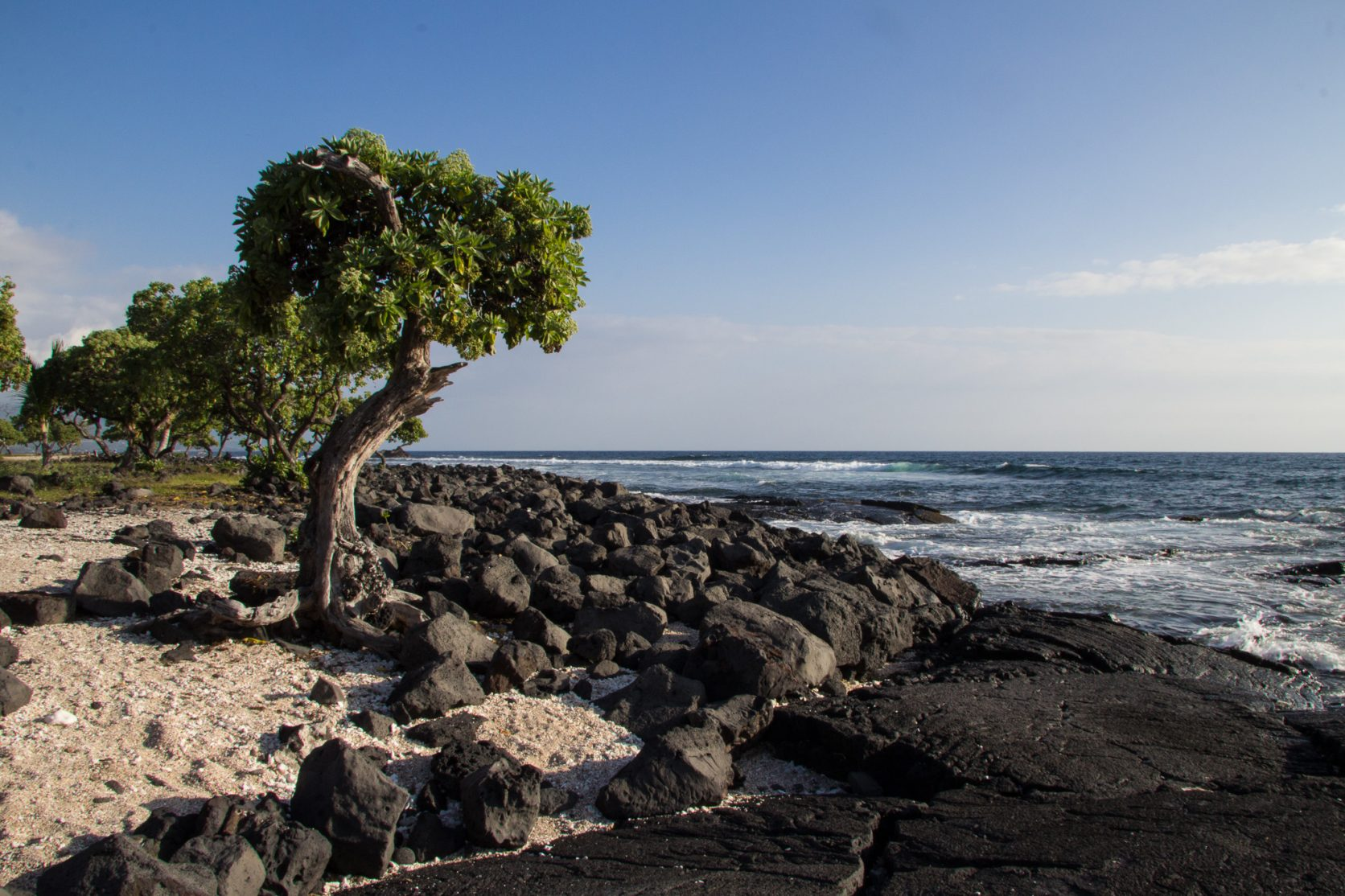 old airport park kailua kona hawaii location big island photographer