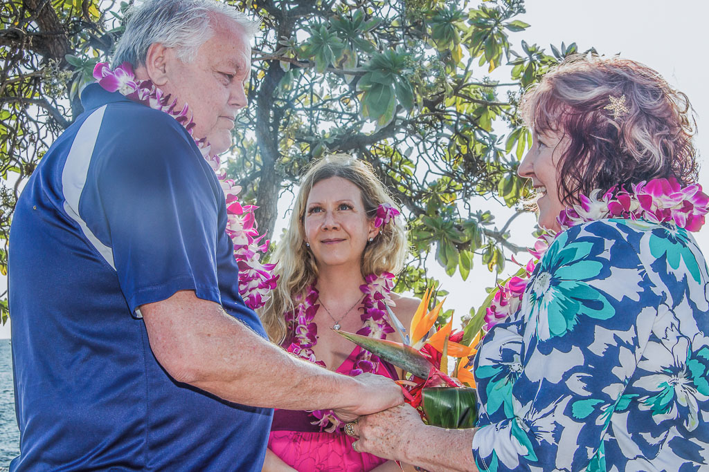 Old Airport Family and Surprise Vow Renewal Beyond the Box Photography Debi Buck 53 3